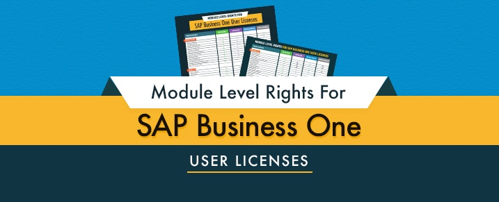 Module-Level-Rights-For-SAP-Business-One-User-Licenses