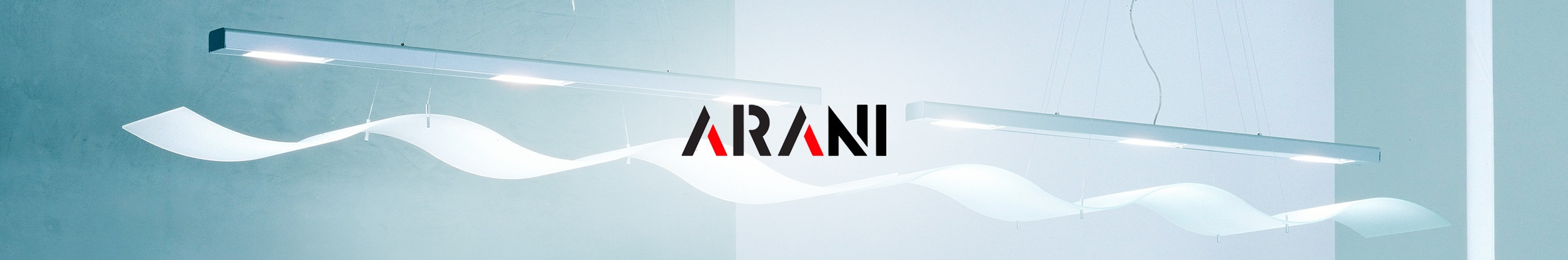 Arani-success-story-APPSeCONNECT