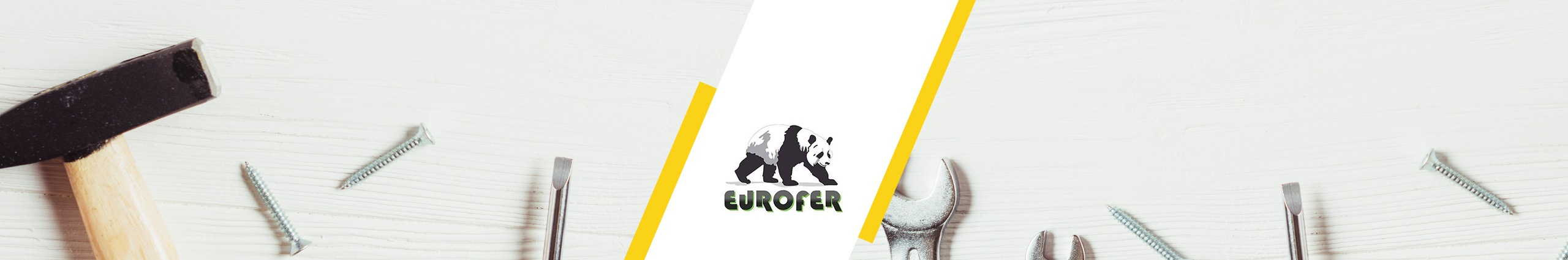 eurofer-APPSeCONNECT-success story