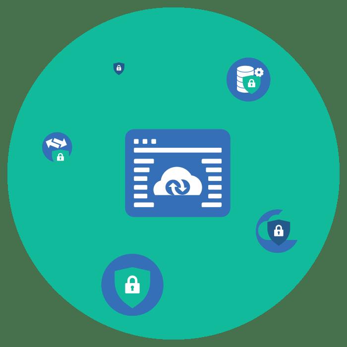 Application & Platform Security