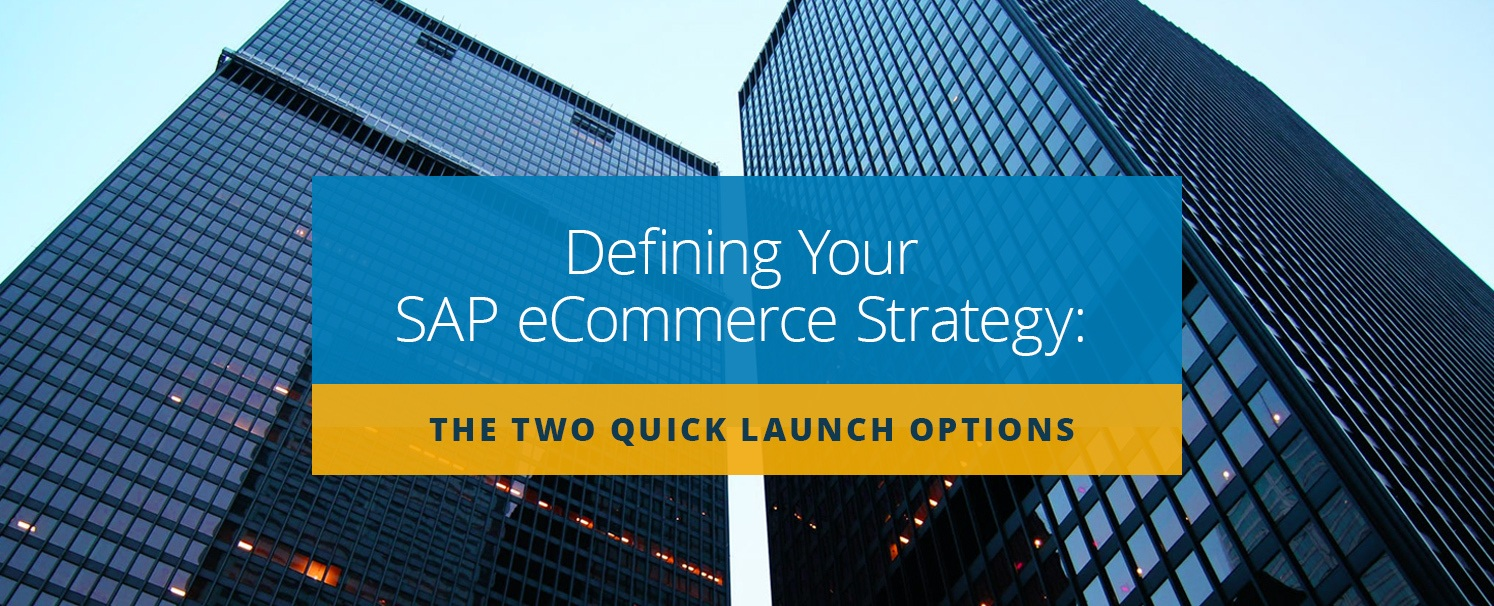 define-sap-ecommerce-strategy-quick-launch-options