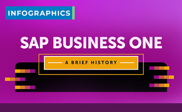 SAP Business One History