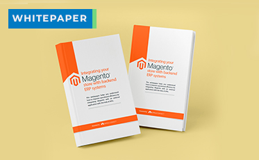 Whitepaper-Magento Store with backend ERP systems